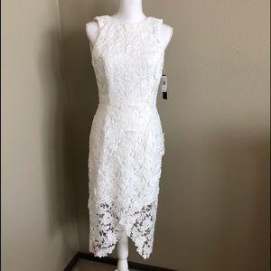 Betsy Adam lace dress